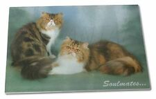 Persian Cats 'Soulmates' Sentiment Extra Large Toughened Glass Cutti, SOUL-9GCBL