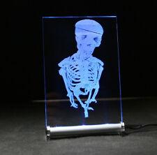 Skelett LED Leuchtschild  Sign Präsent present gift Geschenk