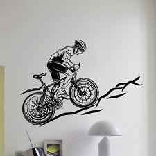 WALL DECAL VINYL STICKER SPORT BOY CYCLING BICYCLE DECOR SB710