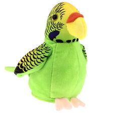 Netter sprechender Papagei spielt Wiederholen Sie was Sie den Kindern