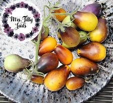 Tomate INDIGO PEAR DROPS Tomatensamen 10 Samen seltene Flaschentomate bunt lila