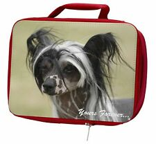 More details for chinese crested dog