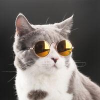 Moda Mascotas Perro Gafas de Sol Gato Protección de Los Ojos Foto Apuntalar Aseo