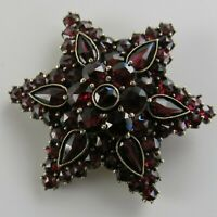Victorian Star Garnet Gold Filled Brooch Pin Rose Cut Bohemian Garnet's [4889]