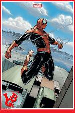 SPIDER-MAN 8 08  Fevrier 2014 Variant cover Angouleme Marvel Now Panini # NEUF #