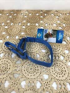 PetSafe Martingale Collar w/Quick Snap Buckle -small - Blue - New W/ Tags