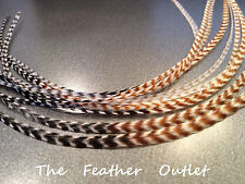 Lot 10 Grizzly Feathers Hair Extensions long thin striped Real TIE DYE NATURAL