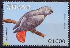 Grey Parrot, Psittacus erithacus, Ghana 2000 MNH, Birds (T91)