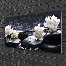 Glasbilder 100x50 Wandbild Druck auf Glas Blumen Steine Pflanzen
