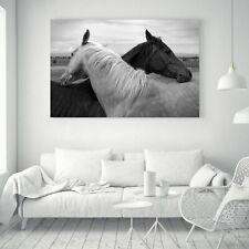 "Horse Animal Black White Art Silk Canvas Poster Paint Decor No Frame 32""x24"""