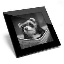 Glass Coaster Bw - Ferret Hammock Pet Rodent Animal #37246