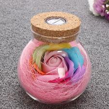 Rose Fairy Light Bottle Creative Romantic RGB LED Dimmer Light 16 Colors NEW