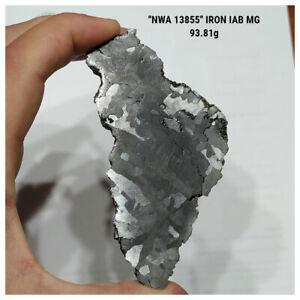 "IA3 - New ""NWA 13855"" Iron IAB-MG Meteorite 93.81g Etched and Polished Slice"