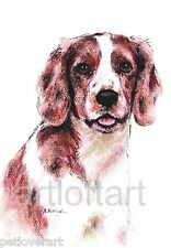 Welsh Springer Spaniel Dog Art Print Signed A Borcuk Painting