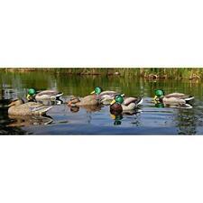 Dakota Decoy Mallards 6Pk Floating Dabblers Duck Hunting Decoys 12130