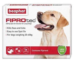 Beaphar Fiprotec FIPROtec Flea Spot On large dog 1 Treatment