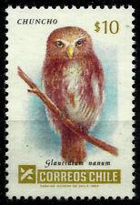 FAUNA, CHUNCHO, GLAUCIDIUM NANUM, YEAR 1985, MNH