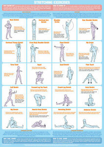 Stretching Exercises Poster Warm Up Cool Down Chart