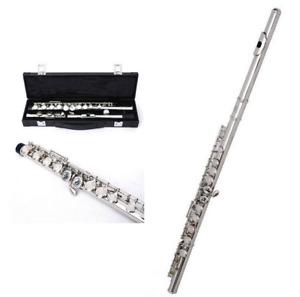 Anfänger Flöte vernickelt 16 Löcher geschlossen mittlere C Key Instrument