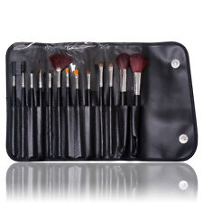 13PCS Makeup Brushes Set Pro Cosmetic Tool Kit Collection Accessory With Case