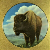 MONARCH OF THE PLAINS Plate Portraits of the Wild Buffalo Bison Hamilton Coll