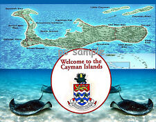 CAYMAN ISLANDS - stingrays - Travel Souvenir Fridge Magnet