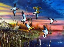 "Final Approach by Jim Hansel  Mallard Ducks and Cabin Print  16"" x 12"""