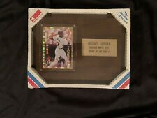 MICHAEL JORDAN Baseball Rookie Of The Year?  Plaque Factory sealed