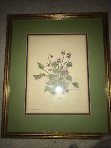 Vintage Nellie Meadows 1969 Violet Viola Papilioacea Framed Signed Artist Print