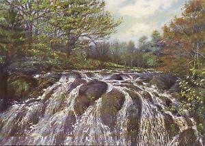The Swallow Falls, Waterfall on Afon Llugwy, Wales - United Kingdom Art Postcard