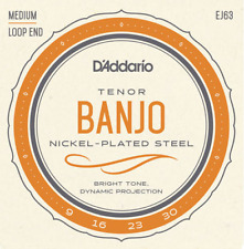 D'Addario EJ63 Tenor Banjo Strings.Gauges.  009, 016, 023w, 030. Loop End