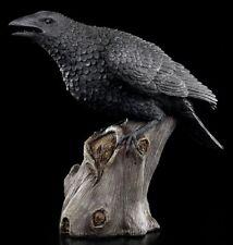 Große schwarze Raben Figur - Ravens Cry - Fantasy Krähe Deko Crow Raven