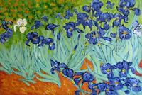 Van Gogh Field with Irises Repro, Quality Hand Painted Oil Painting, 24x36in