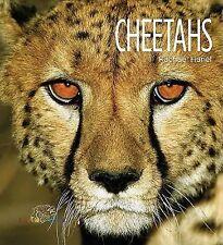 Cheetahs (Living Wild)-ExLibrary