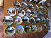 9 RARE PLATE - SPODE / WEDGWOOD / DAVENPORT HORSE COLLECTION - MINT CONDITION