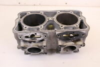2009 POLARIS RMK 800 DRAGON Cylinder Jug MonoBlock CORE