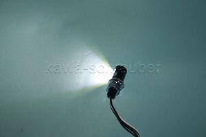 Mini LED Kennzeichenbeleuchtung 12V klein rund schwarz  neu Motorrad Custom new