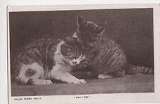 I Was First, Philco Series Cat RP Postcard, B371