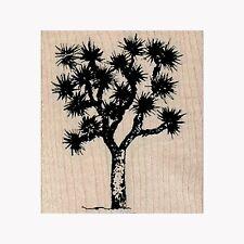 Sello de goma montado, Joshua Tree, desierto, yuca Palma, naturaleza, al aire libre, árboles