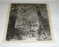 1878 magazine engraving ~ THE CYPRESS OF CHAPULTEPEC, MEXICO CITY