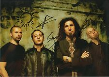 System of a Down Autogramme signed 20x30 cm Bild