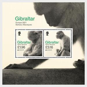 GIBRALTAR 2021 EUROPA CEPT Endangered national wildlife Barbary Macaques SHEET