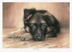 German Shepherd, Open Edition Pup Print by Vic Bearcroft