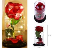 Rose Rouge Fleurs éternelles en soie sous Dôme Décoration Intérieur Fête de Noël