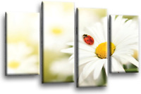 Floral Daisy Wall Art Grey White Yellow Flower Love Home Canvas Split Picture