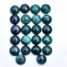 Untreated Natural Malachite 22 Pcs 11MM Round Cabochon Top Quality Gemstones