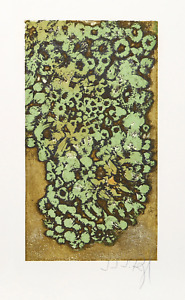 J.J.J. Rigal, Les Lichens from the Herbier Portfolio, Etching, signed in pencil