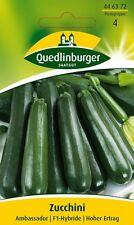 Quedlinburger   Zucchini    Ambassador F1 Samen Saatgut Saat Gärtnerqualität