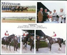 RUFFIAN - 1975 MOTHER GOOSE STAKES 8X10 HORSE RACING PHOTO COLLAGE!