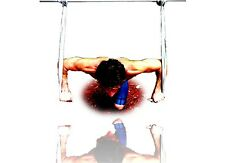 Gymnastics Strength & Conditioning Training Straps (with handles)